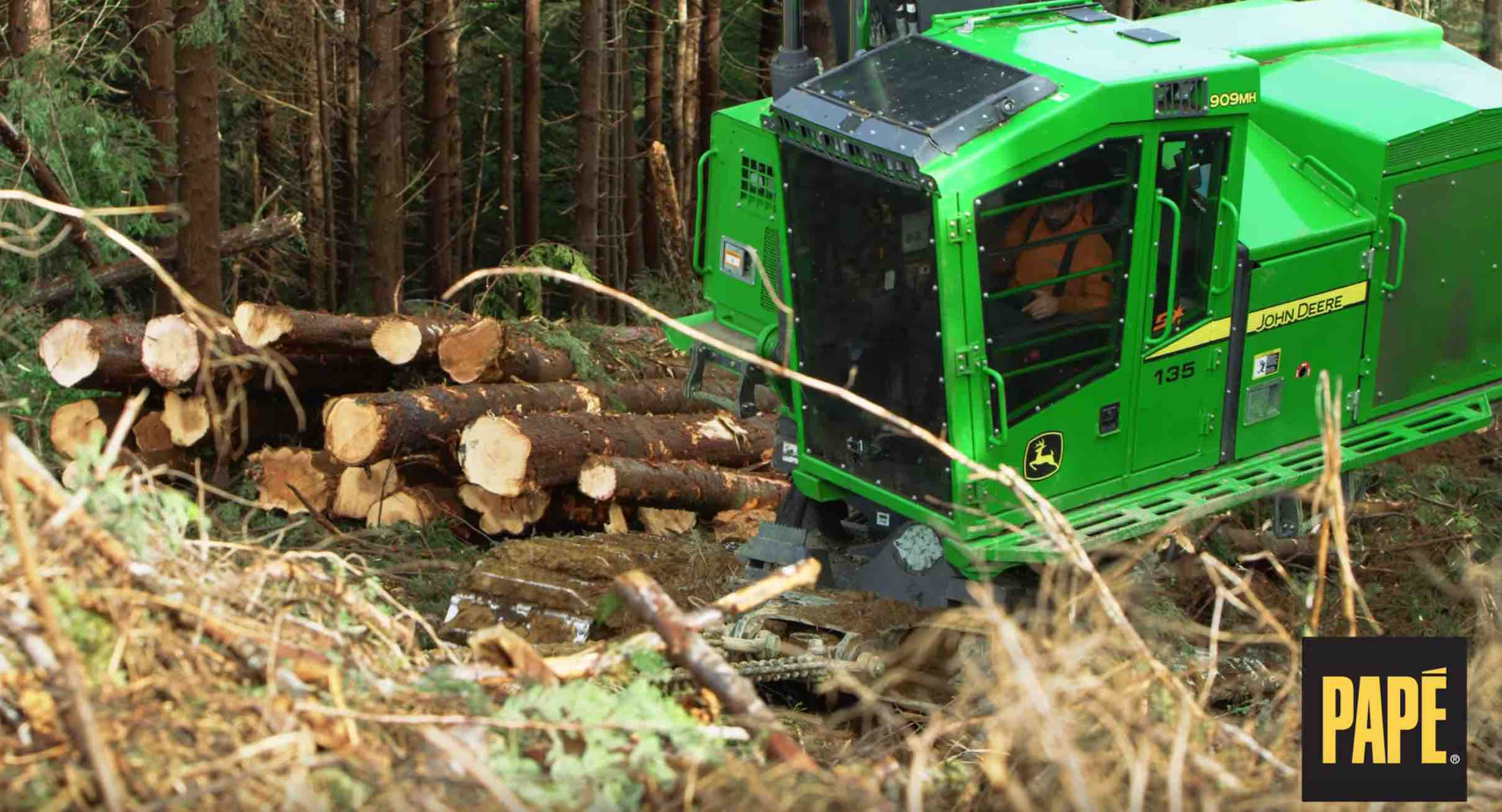 Papé Side-Slope Logging