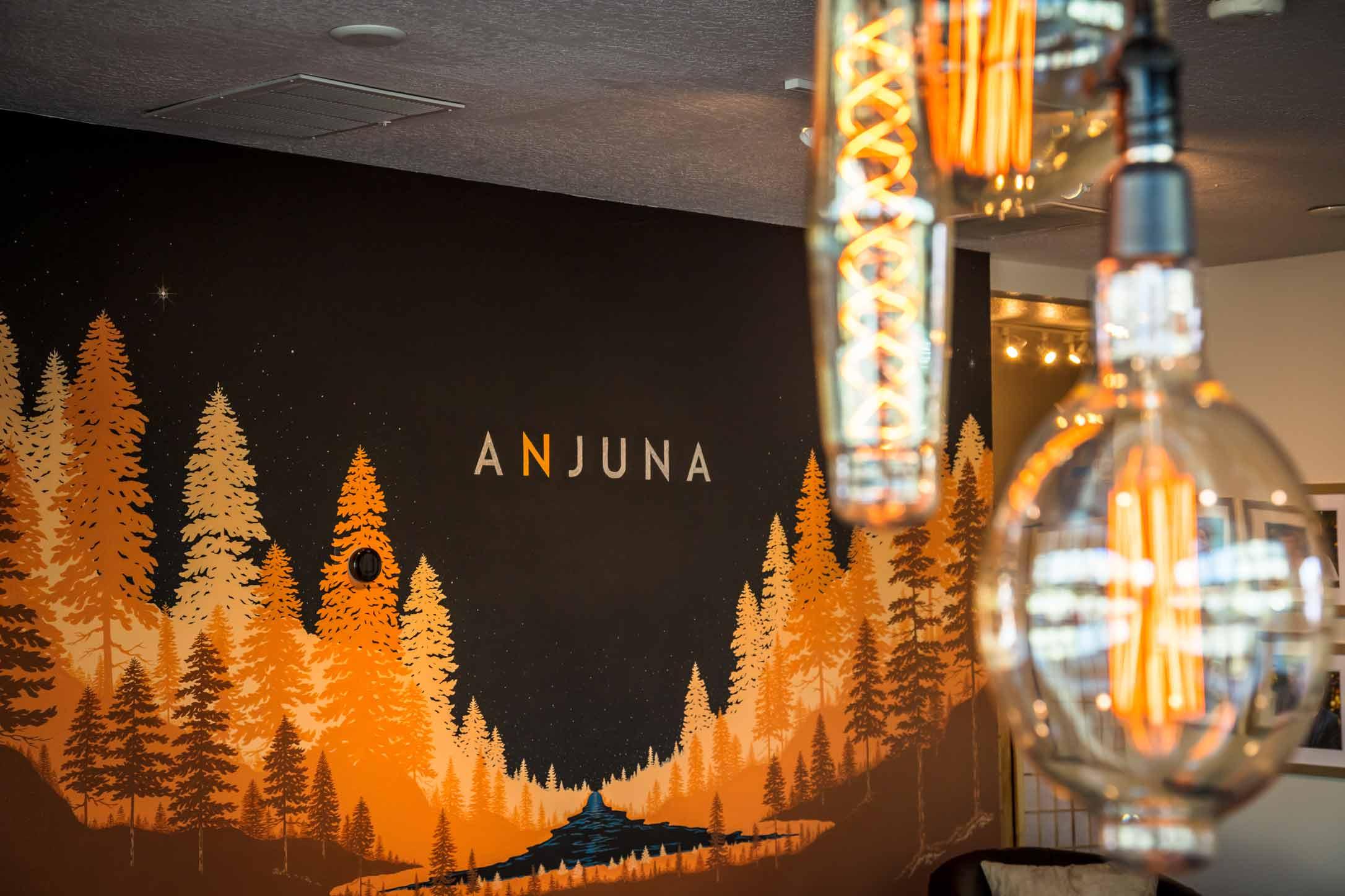 Case Study: Anjuna Medicine